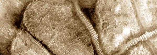 трубы стеклянные на марсе
