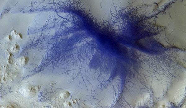 синий паук на марсе