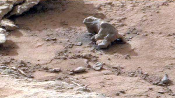 марсианская игуана